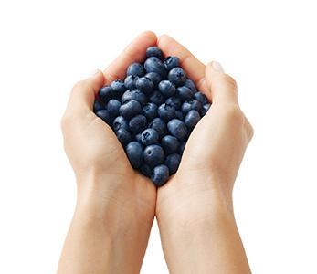 Blueberry Hands